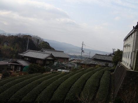 春は名のみの寒い朝 : 恭仁京東...